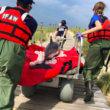 IFAW en SOS Dolfijn gaan samenwerken voor hulp aan walvissen in nood
