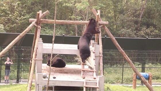 beren gered