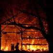 Nu al meer dode dieren bij stalbranden dan vorig jaar