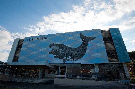 dolfijnendrijfjacht