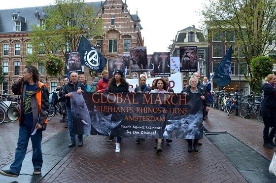 GMfER Amsterdam