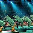 #GNvdD: India verbiedt wilde dieren in circussen