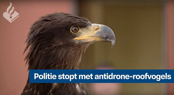 antidrone-roofvogels