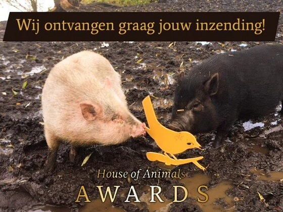 House of Animals Awards 2018