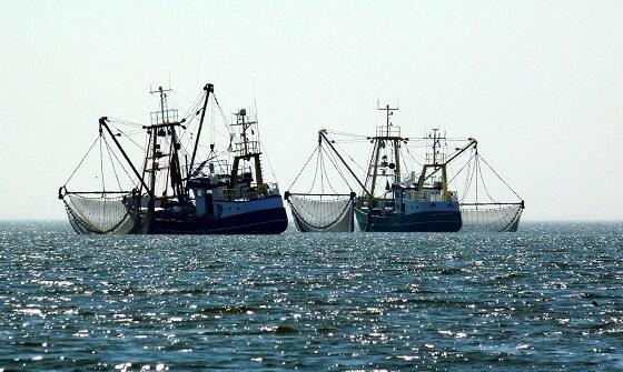 vangstquota