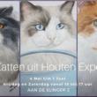 Tip: Expositie tekeningen 'Katten uit Houten'