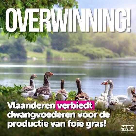 Vlaams verbod