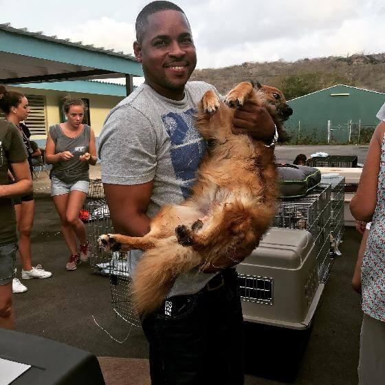 honden op Curaçao