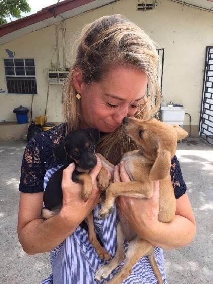 honden van Curaçao