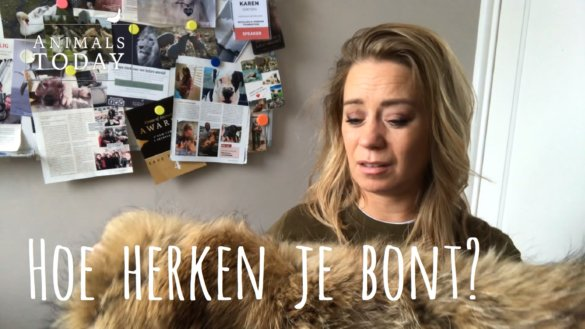 Karen's vlog