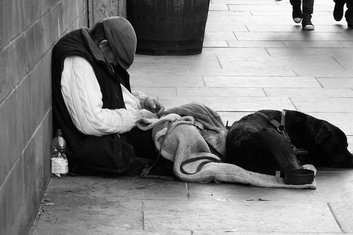 Waar kunnen daklozen bij kou met hond terecht?