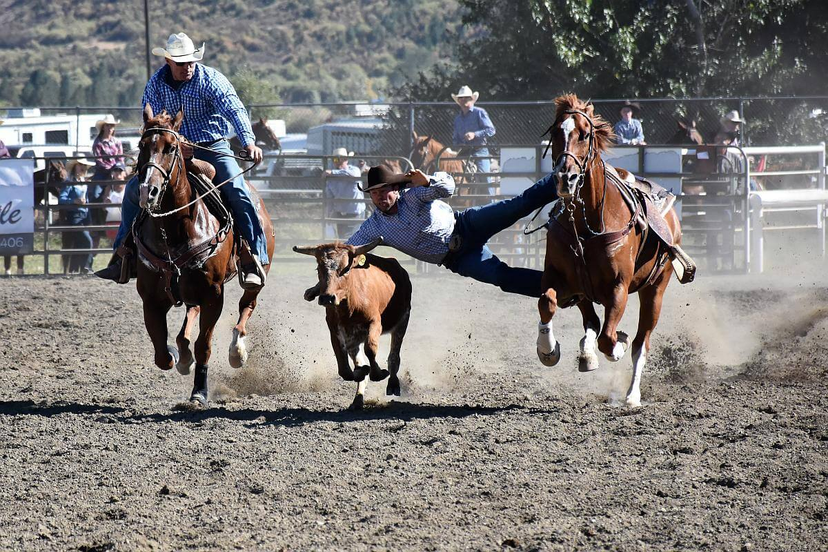 rodeo's