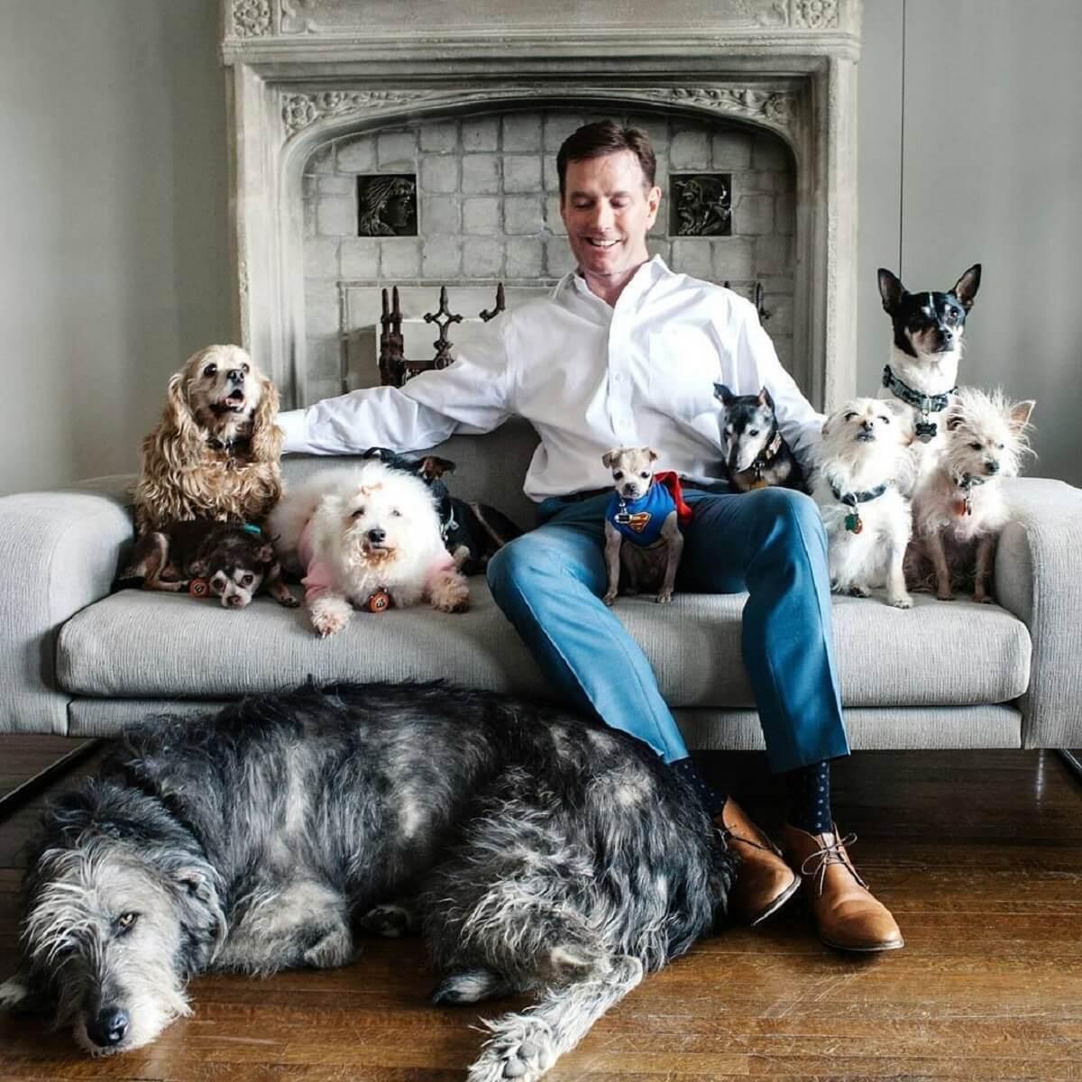 hoogbejaarde honden