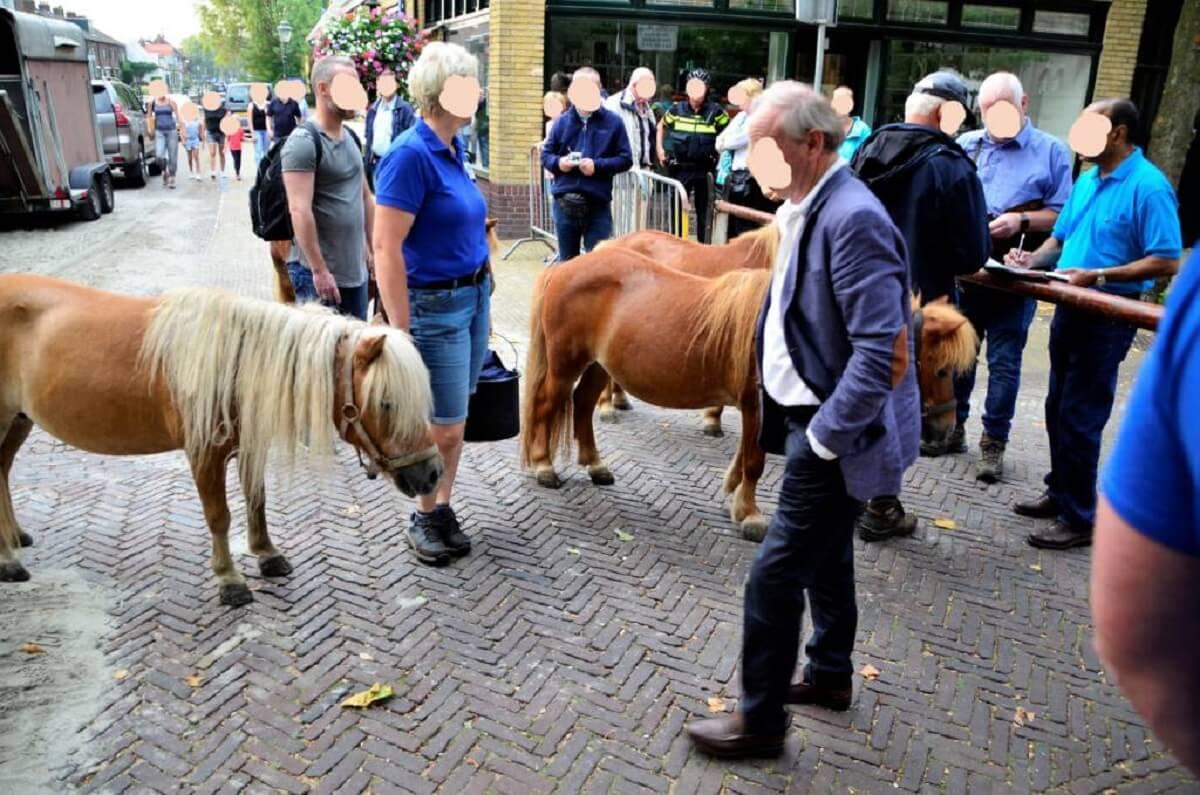 paardenmarkt Voorschoten