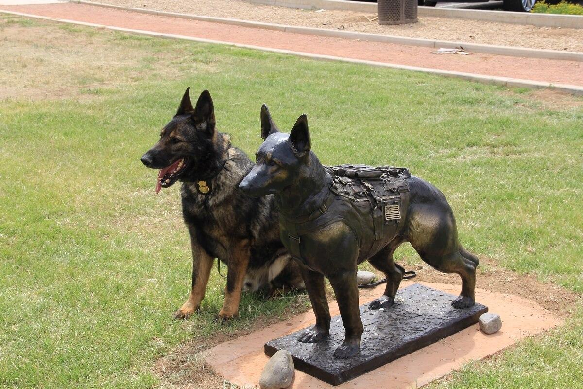 standbeeld voor een hond