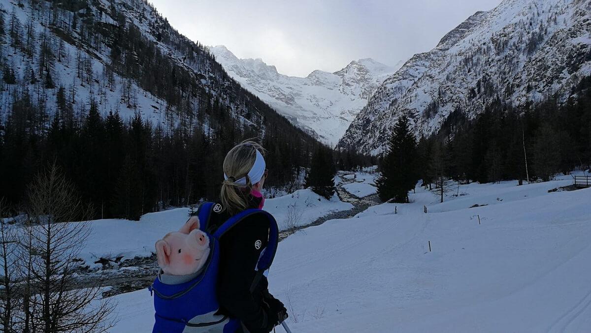 1000 km langlaufen voor varkensruim 300 kilometer afgelegd