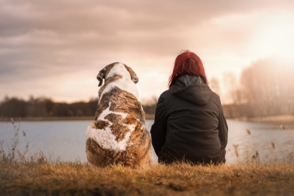 mens en hond
