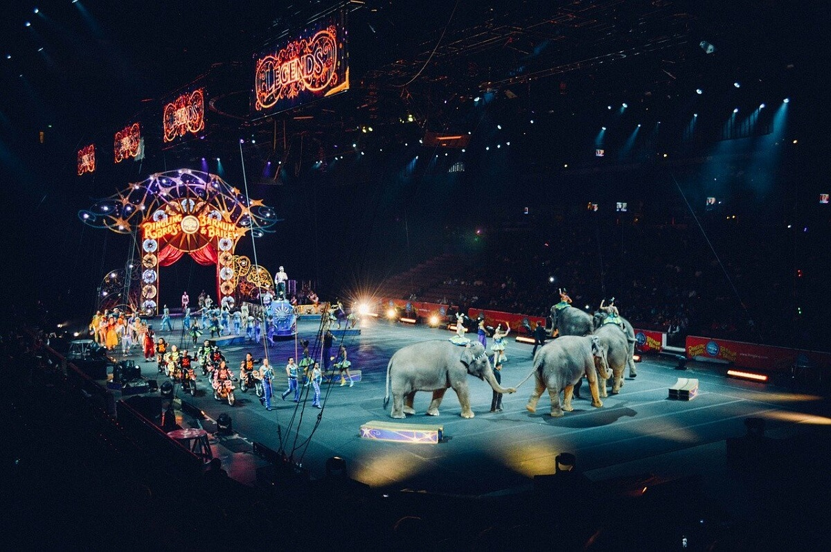 reizende circussen