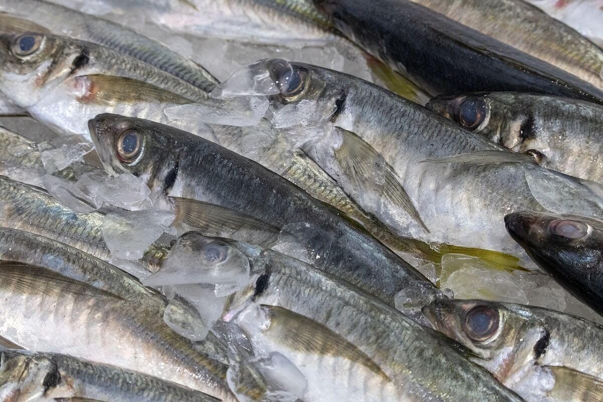 viskeurmerken