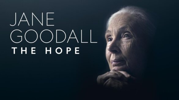 documentaire The Hope van Jane Goodall