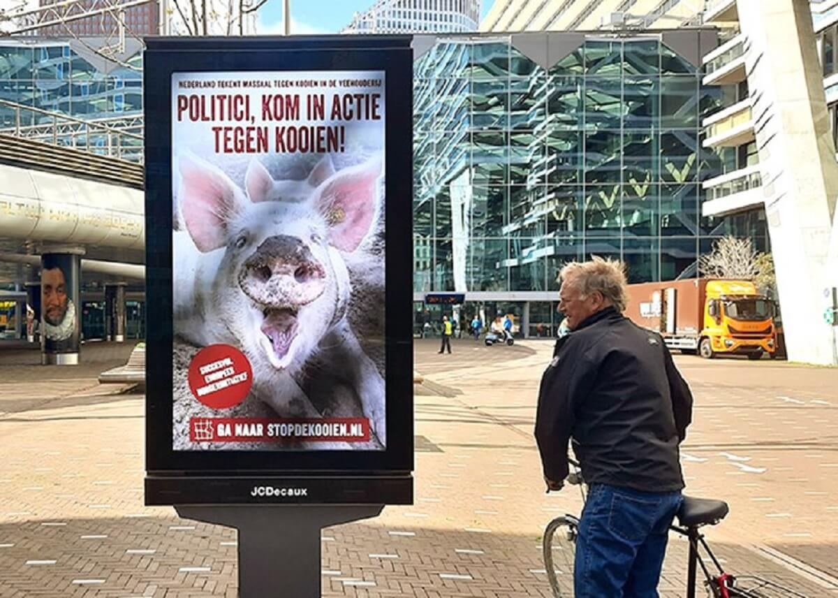 poster Stop de kooien in Den Haag