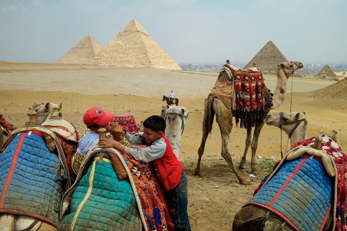 kamelenmishandeling