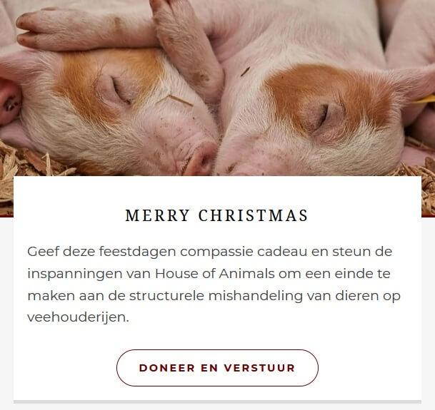 Help dieren en steun het werk van House of Animals
