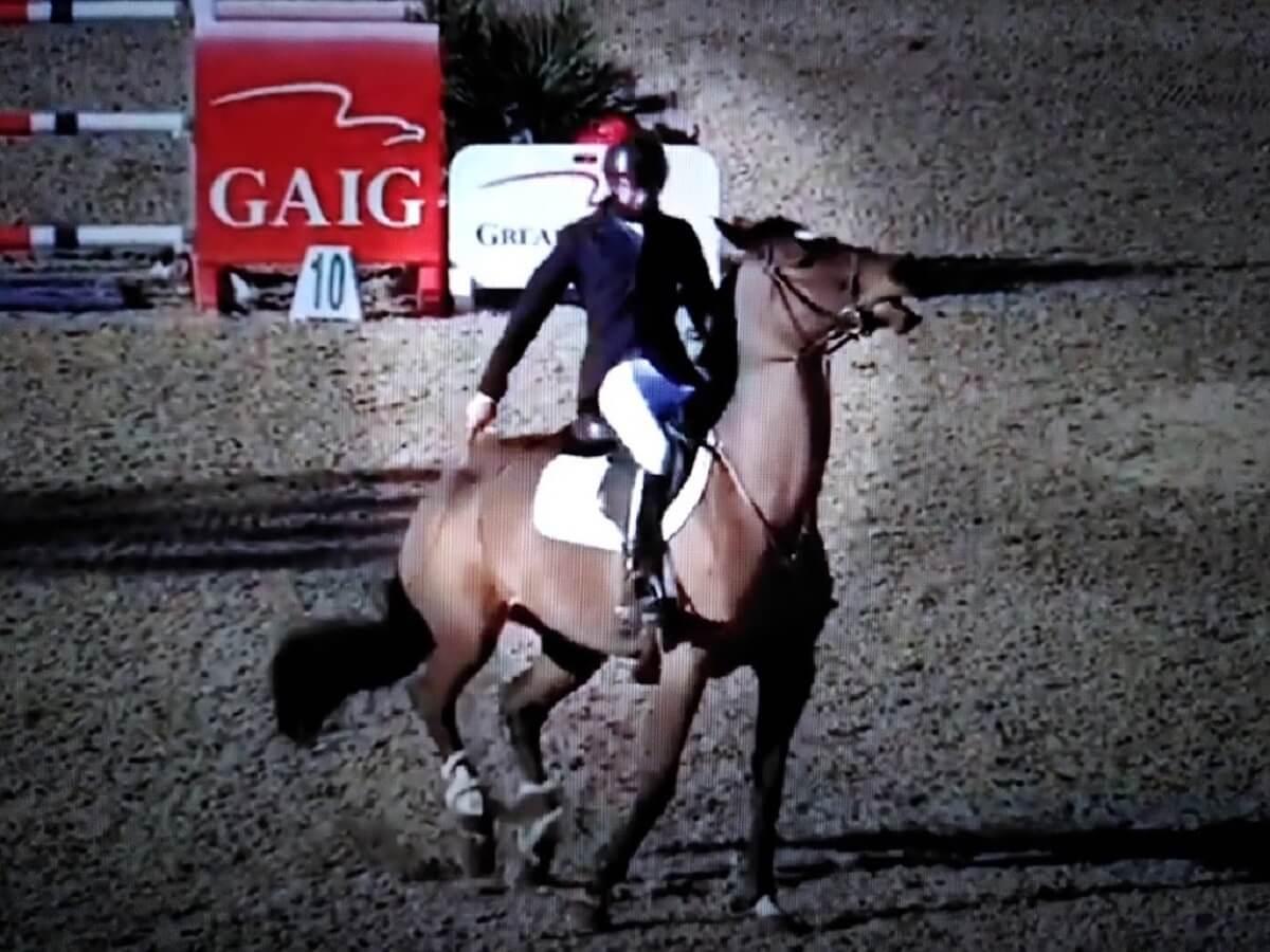Kevin Lemke mishandelde paard Good Luck