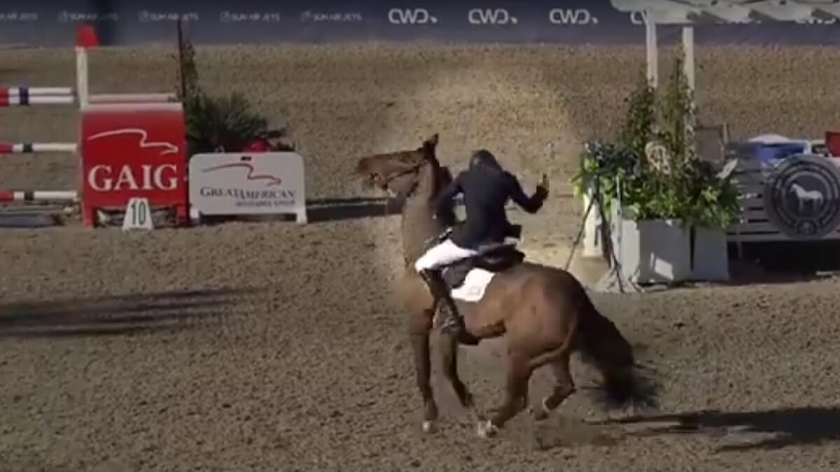 Kevin Lemke mishandeld paard Good Luck