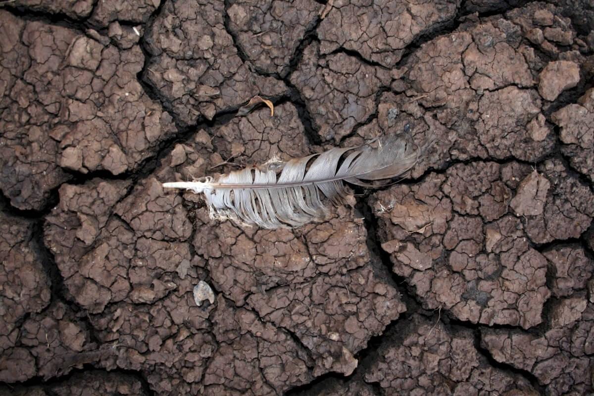 Opwarming sleept wereld naar de rand van de afgrond