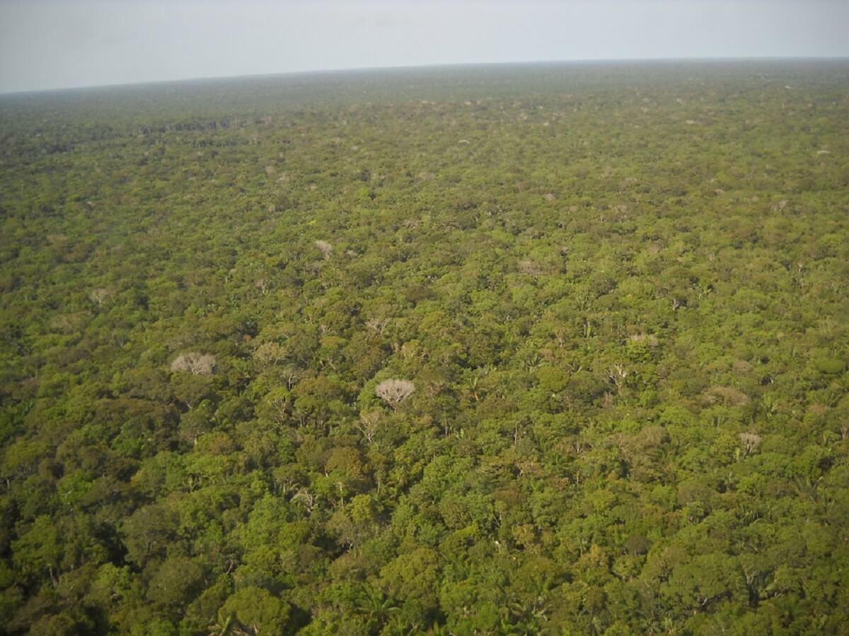Karipuna klagen Braziliaanse staat aan voor toestaan landroof