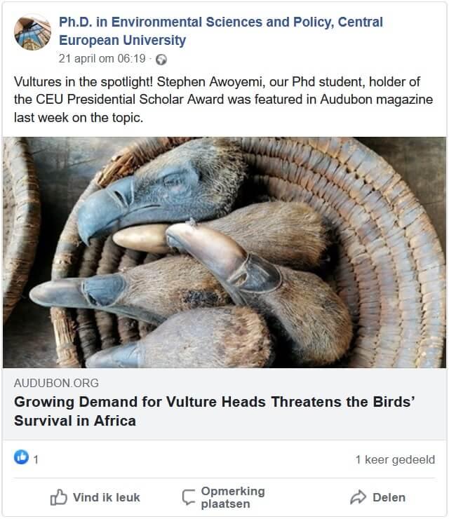 Gieren Afrika bedreigd: vergiftigd door stropers, boeren en bijgeloof