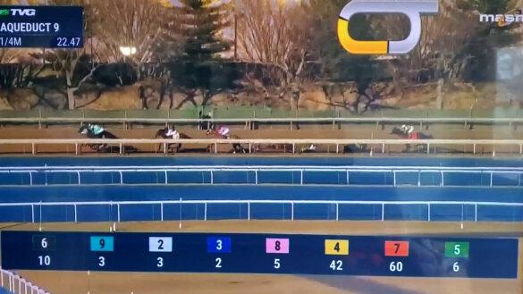 Vallende paarden tijdens de Kentucky Derby