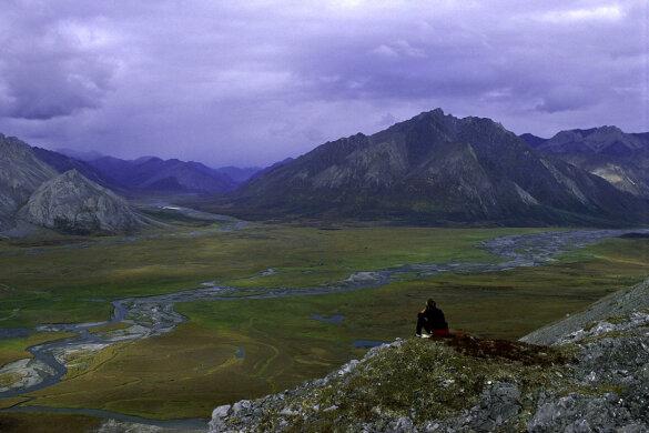 Biden schort olieboringen in Alaska op