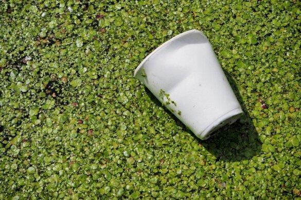 EU-maatregelen wegwerpplastic onvoldoende