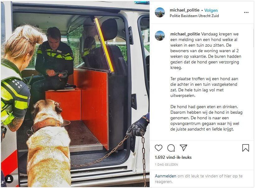 Hond twee weken lang achtergelaten in tuin
