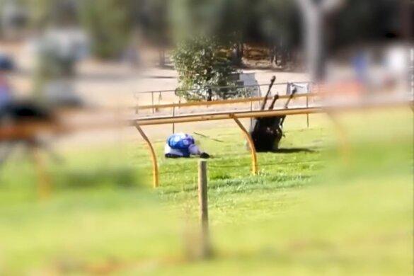 Steeplechase verdwijnt van Zuid-Australische racekalender