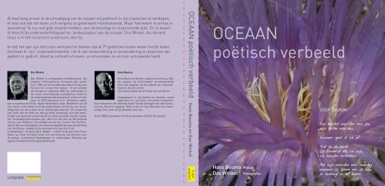Oceaan Poëtisch Verbeeld