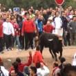 PiepVandaag Reportage: Undercover bij Toro de la Vega