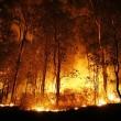 Weer ernstige bosbranden in Chili