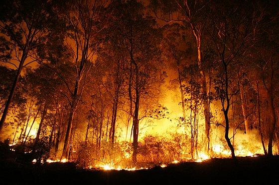 bosbranden Spanje