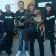Stichting DZG start fonds voor geredde honden uit Sevilla