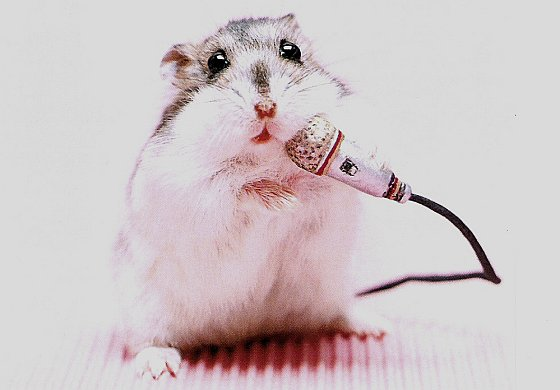 Hamster met microfoon