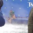 Filmmakers 'A Dog's Purpose' beschuldigd van dierenmishandeling op filmset