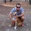 Spaanse hond dupe van angst voor ebola