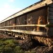 India verbiedt invoer van reptielenhuiden en bont