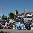 Erwin Vermeulen: de Nederlandse politiek en het einde van dolfijnengevangenschap