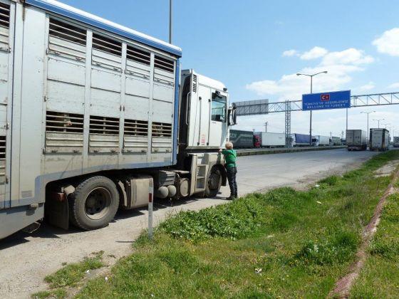 veetransport slachthuizen