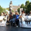 Loop mee in de Global March for Elephants and Rhinos!