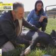 Jon Stewart begint dierenopvang op familieboerderij